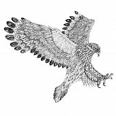 foto of sky diving  - Tattoo attacking golden eagle - JPG