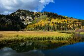 stock photo of marshes  - Fall colors reflecting in Silver Lake - JPG