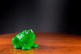 stock photo of baby frog  - Green plastic frog enjoys a puddle of water - JPG