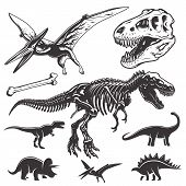 Set of dinosaurs elements poster