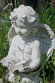 image of girl reading book  - Garden statue of angel reading the book - JPG