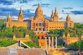 Cathedral Of Saint Mary Of The See (catedral De Santa Maria De La Sede), Better Known As Seville Cat poster