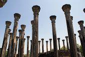 image of vihara  - Stone pillars of Mandalagiri Vihara Sri Lanka - JPG