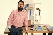 Business Manager. Serious Bearded Man At Workplace. Businessman. Office Life. Bearded Man In Office. poster