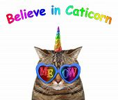 The Cat Unicorn Wears Blue Sunglasses With Inscription Meow. Believe In Caticorn. White Background.  poster
