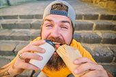 Street Food Concept. Man Bearded Eat Tasty Sausage And Drink Paper Cup. Urban Lifestyle Nutrition. J poster