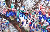 Many glass mascots - evil eye charms hang from a tree in Cappadocia, Pigeon valley, Turkey poster