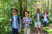 travel, tourism, hike and people concept - group of friends walking with backpacks in forest poster