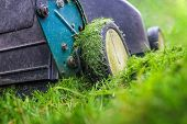 Lawnmower cutting grass that is too long with grass sticking to the wheels, shallow focus on grass c poster
