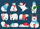 Christmas Polar Bears. Arctic Bear With New Year Gifts, Happy Snow Animal In Merry Christmas Sweater poster