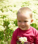 stock photo of sand lilies  - Little boy picking flowers  - JPG