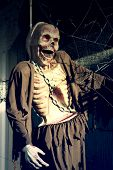 image of gruesome  - Halloween skeleton hanging on a tree - JPG