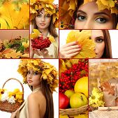 foto of face-fungus  - Collage of beautiful autumn - JPG