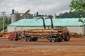 picture of logging truck  - Log loader working a lumber mill logging truck reciving yard in Roseburg Oregon - JPG
