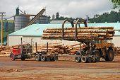 foto of logging truck  - Log loader working a lumber mill logging truck reciving yard in Roseburg Oregon - JPG