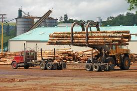 stock photo of logging truck  - Log loader working a lumber mill logging truck reciving yard in Roseburg Oregon - JPG
