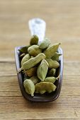 foto of cardamom  - green cardamom pods spice - aromatic seasoning for food