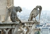 stock photo of gargoyles  - Stone demons gargoyle und chimera with city of Paris on background - JPG