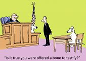 foto of courtroom  - Cartoon of courtroom with judge - JPG