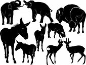 stock photo of baby animal  - Collection of silhouettes of mammals animals baby animal - JPG