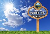 stock photo of milk  - Wooden sign with a pole text Fresh milk grazing cows and steel cans for the transport of milk on blue sky with clouds sun rays and green grass - JPG