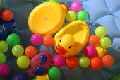 image of baby duck  - A yellow baby duck toy floating in water along with colorful balls in a baby swimming pool - JPG