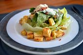 picture of caesar salad  - close up caesar salad in white plate