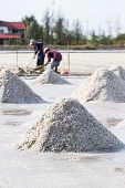 picture of salt mine  - Farmers are harvesting salt in the salt fields south of Thailand - JPG