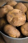 stock photo of solanum tuberosum  - Jersey Royal new potatoes fresh out of the ground grown on the channel island of Jersey shot with shallow focus - JPG
