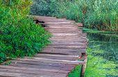 Wood Footpath In Dal Lake, Srinagar, India. poster