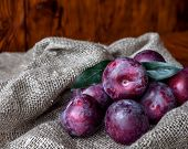 Plum. Fresh Plum. Harvest. Autumn Harvest. Autumn. Blue Plums. Yellow Plum. Fresh Plums On A Wooden  poster