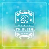 Spring Badge Vector Typographic Design Greeting Card. Spring Blurred Lights Background And Flowers.  poster