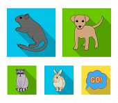 Puppy, Rodent, Rabbit And Other Animal Species.animals Set Collection Icons In Flat Style Vector Sym poster