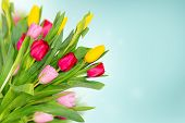 Spring Flowers Tulips On Blue Background. Spring Banner With Bunch Of Flowers. Copy Space poster