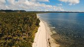Beautiful Tropical Island With Sand Beach, Palm Trees. Aerial View Of Tropical Beach On The Island S poster
