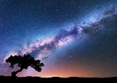 Milky Way With Alone Old Crooked Tree On The Hill. Colorful Night Landscape With Bright Milky Way, S poster