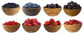 Blue-black And Red Fruits And Berries Isolated On White. Sweet And Juicy Berry With Copy Space For T poster