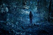Woman Walking Alone On Path In Mystic Dark Forest. Lonely Adult Girl In Strange Creepy Park At Night poster