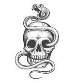 Skull And Snake Drawing. Skulls Entwined Viper Evil Concept Clipart, Vintage Demonic American Tradit poster
