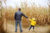 Little Boy And His Father Having Fun On Pumpkin Fair At Autumn. Family Walking Among The Dried Corn  poster