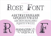 Hand Drawn Calligraphic Vector Serif Font. Distress Ornate Floral Letters. Modern Calligraphy Gentle poster