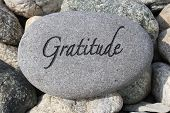 picture of humble  - Positive reinforcement word Gratitude engrained in a rock - JPG