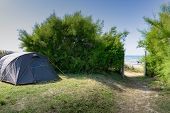 A Campsite With A Tent Right Next To A Beach Access Leading Through Thick Green Bushes To An Idyllic poster