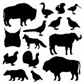 Wild Animals And Birds Monochrome Vector Silhouettes. Lynx And Buffalo, Forest Fox And Bison, Woodco poster