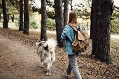 Woman Walking Dog. Young Girl With Her Dog, Alaskan Malamute, Outdoor At Autumn. Domestic Pet poster
