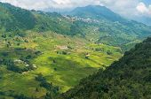 Spectacular Rice Terraces In Mountain Valley. Aerial View. Travel And Wanderlust Concept Exploring W poster