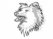 Retro Cartoon Style Drawing Of Head Of A Shetland Sheepdog , A Domestic Dog Or Canine Breed On Isola poster