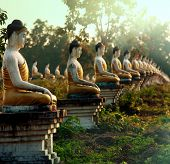 picture of southeast asian  - Buddhas statue garden - JPG