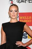LOS ANGELES - OCT 18:  Peta Murgatroyd at the 2013 GLSEN Awards at Beverly Hills Hotel on October 18
