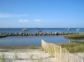 foto of dauphin  - This shot was taken on the North East shore of Dauphin Island - JPG